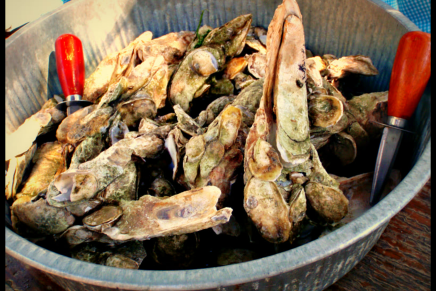 How to Eat an Oyster in Bluffton, S.C.